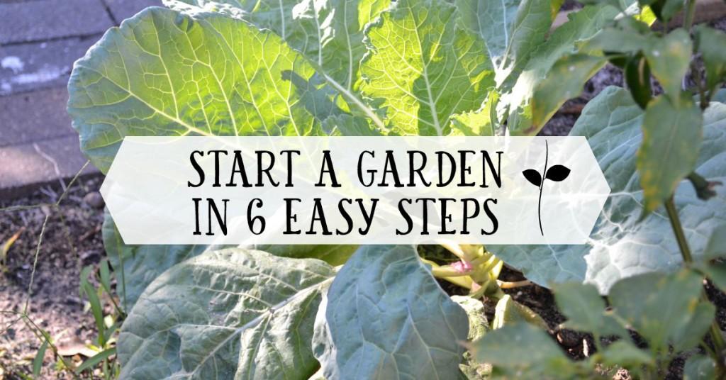 start-a-garden