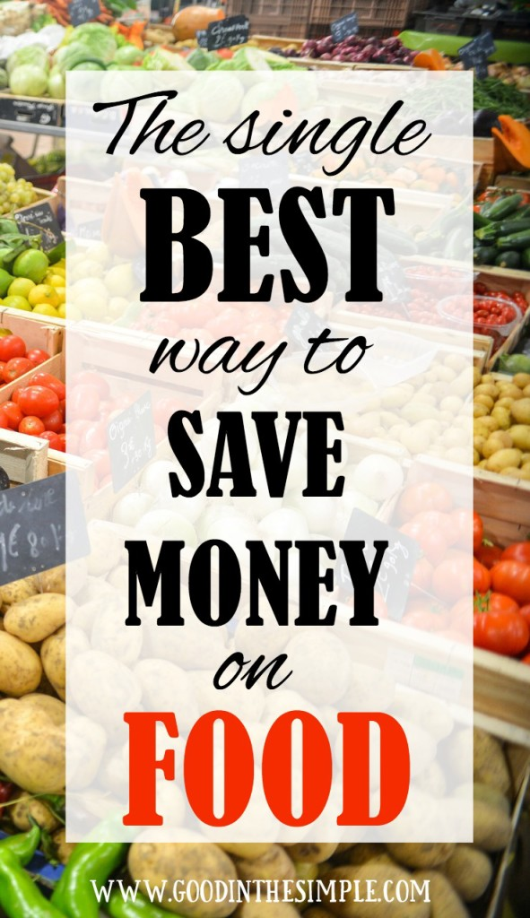 8 Simple Ways to Stop Wasting Food & Save Money
