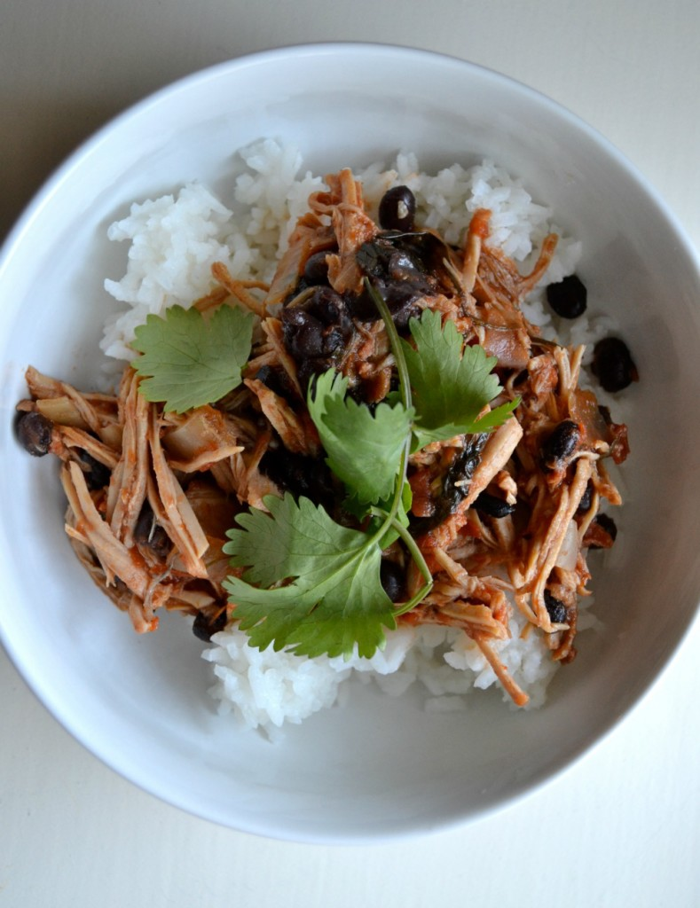 slow-cooker-mexican-pork-2