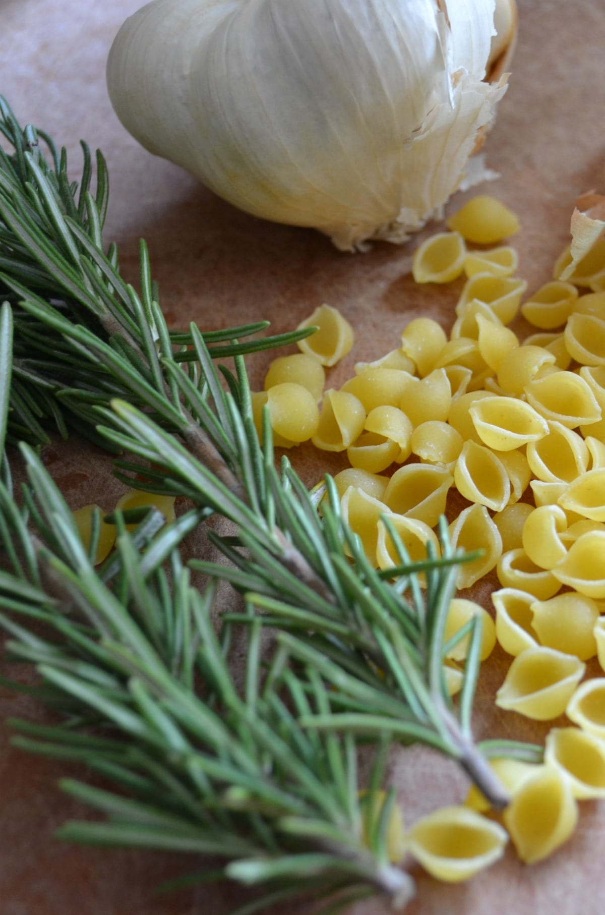 Pasta Fagioli ingredients include fresh rosemary, garlic, and small pasta shells
