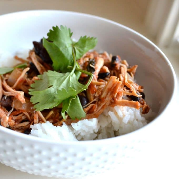 Slow cooked Mexican pork over white rice with black beans and cilantro