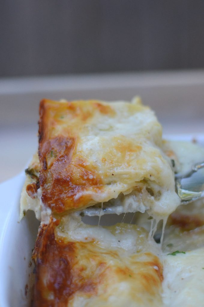 Baked lasagna fresh out of the oven